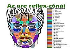 A MAGYAROK TUDÁSA: A kézben - a talpon... benne van az egész ember - Térkép az egészségünkhöz - Reflexzónák - Aura - Csakrák - Csokrok Reflexology Massage, Giza, Wellness Fitness, Health And Beauty, Colours, Superhero, Blog, Yamamoto, Pilates