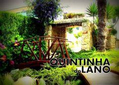 Quinta do Lano Lany, Aquarium, Arch, Outdoor Structures, Garden, Entrance Halls, Appetizers, Photos, Goldfish Bowl