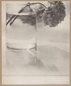 photo NB allemande : Baron Adolf De Meyer, 1908, Camera Work, n° 24, bouquet de fleurs, pictorialisme, 1900s