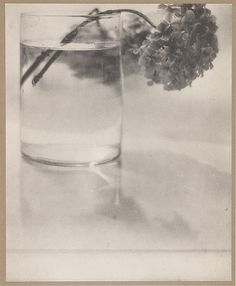 Still Life, De Meyer, Baron Adolf, b.1868-1946 Camera Work XXIV, 1908, 19.2 x 15.5 cm, Photogravure