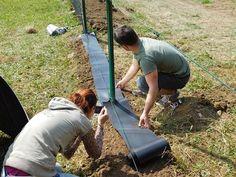 Zatočte s plevelem (nejen) pod plotem. Vyzkoušejte fólii - Zahrada