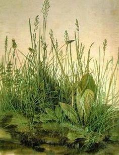 lucian freud plants - Recherche Google