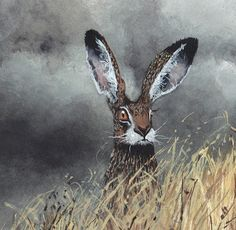 MAGGIE VANDEWALLE Hare Illustration, Illustrations, Animals And Pets, Cute Animals, Spirited Art, Rabbit Art, Bunny Art, Creature Feature, Wildlife Art