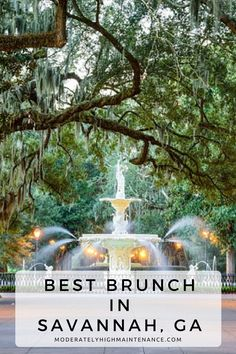 Forsyth Park – This large park in the historic district of the city features the oak trees dripping with Spanish moss, and is the ideal location for a romantic afternoon stroll. Even though Savannah is a Southern tourist hot spot, it unfortunately doesn' Usa Travel Guide, Travel Usa, Travel Tips, Travel Ideas, Canada Travel, Nice Travel, Globe Travel, Travel Articles, Medan