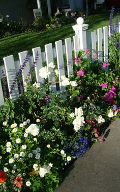 This fence is full of color and plant diversity. - garden design by http://www.alfordsenglishgardens.com