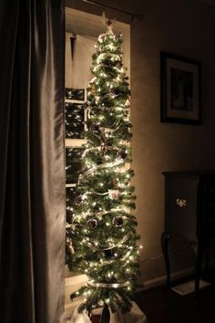 1000 Images About HOLIDAY Christmas Trees On Pinterest Christmas