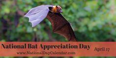 National Bat Appreciation Day - April 17