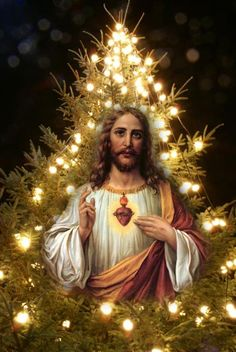 Story of a Boy who used to See Jesus Coming Every Christmas (Happy Birthday my friend, Jesus!) – The Mumukshu Soul Jesus And Mary Pictures, Pictures Of Jesus Christ, Religious Pictures, Religious Art, Holly Pictures, Merry Christmas Gif, Christmas Jesus, Christmas Birthday, Xmas
