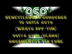 Dedetização Sorocaba 15 98114 4579 Grupo ASA | Dedetização Sorocaba 15 98114…
