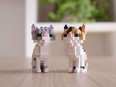 nanoblock chats gris-blanc et écaille-de-tortue
