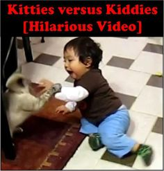 In the war of kitties versus kiddies, there are no prisoners. Share this with your friends! #humor #funny