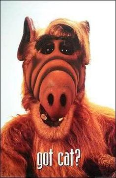 Alf!!- maybe this? Hey he loves eating cats?!?! Who wouldn't love this show