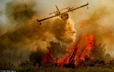 Incredible pictures show how skilled pilots risk their lives to put out ravaging forest fires in southern Italy Fire Tornado, Bomber Plane, Firefighter Pictures, Wild Fire, Southern Italy, He Is Able, Picture Show, Badass, Pilot