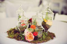 moss and terrarium centerpiece