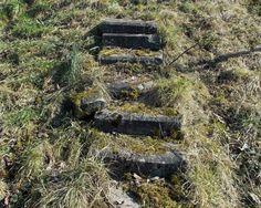 Die Treppe. Die Treppen.  Die Steintreppe. Die Steintreppen.  Diese Steintreppe ist alt und verwittert.  Auf den Stufen wächst Moos.