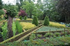 Jardin Floral de Digeon - Flip - Picasa Web Albums