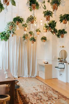 hanging plants + goa
