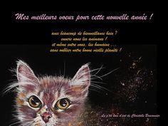 """""""Meilleurs voeux"""" - Pastel sec par Christelle Braconnier"""