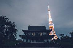 Tokyo Nights - Tokyo Nights.
