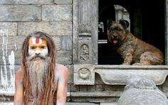 'The Traveller Dog' Visits Most Famous Landmarks Around The World
