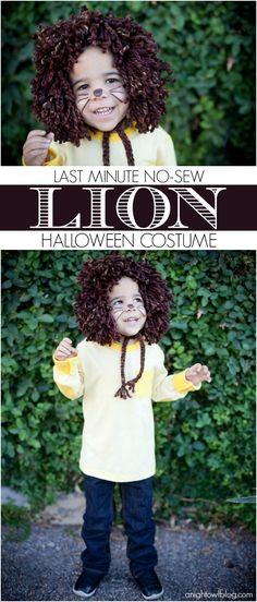 Easy last minute, no-sew kids Lion Halloween Costume at anightowlblog.com | #kids #halloween #costumes