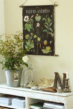 vintage home decor Jennifer Rizzo: Beautiful botanical favorites. Botanical Interior, Botanical Decor, Botanical Prints, Love Vintage, Foto Transfer, Wall Decor, Room Decor, Rustic Table, Deco Design