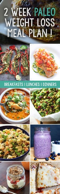 14 Day Paleo Diet Plan. Here is  a full Two Week Paleo Meal Plan full of delicious, healthy, natural meals and recipes to help you lose weight and get fit. Break