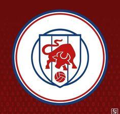 Football Logo Design, Team Logo Design, Soccer Logo, Logo Vintage, School Logo, Sports Logos, Logo Ideas, Buick Logo, Branding