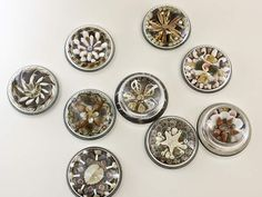 shell paper weights