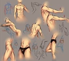 I still learn about anatomy too. but this tutorial will show you how I draw male anatomy. So almost of this pic is inorrect from real anatomy. Drawing Male Anatomy, Human Figure Drawing, Figure Drawing Reference, Body Drawing, Drawing Practice, Anatomy Reference, Drawing Hands, Anatomy Male, Sketch Drawing