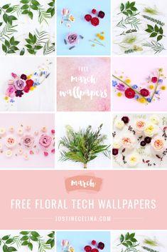 Free Desktop Wallpaper, Wallpaper Downloads, Amazing Flowers, Bloom, Digital, Floral, Pretty, Inspiration, Biblical Inspiration