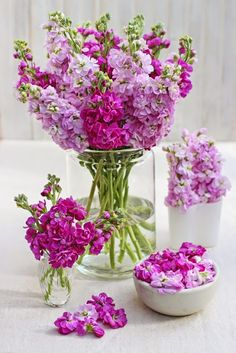 A Bunch for the Weekend-# 53-More Scented Pink Stock Flowers-Ingrid Henningsson-Of Spring and Summer