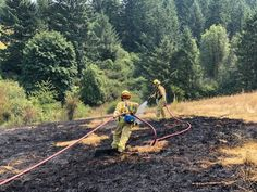 Oregon homeowner trying to kill yellowjackets with fire ignites blaze Firefighters, Acre, Oregon, Hot, Ideas, Firemen, Fire Fighters, Thoughts