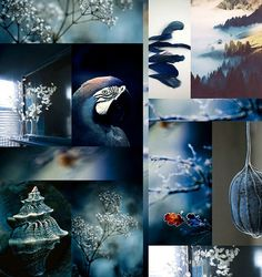 FASHION VIGNETTE - Trend Moodboard by Gudy Herder from Eclectic Trends. Love this as a stand alone image and as a group of individual images. It has so much on it to inspire Colour Schemes, Color Trends, Bleu Indigo, Colour Board, Color Pallets, Shades Of Blue, Mood Boards, Vignettes, Pantone