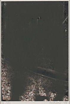 Gerhard Richter, Grey, 2008