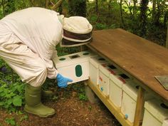 Blue Grass Honey Farm - Gallery
