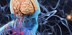 Investigadores Israelies desarrollan un implante para regenerar células nerviosas.
