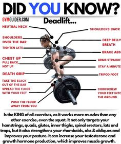 The classic deadlift is a move that can build real-world strength and burn plenty of calories, while layering muscle onto your back, arms, and thighs and training rock-solid core stability, too. Gym Tips, Gym Workout Tips, Weight Training Workouts, At Home Workouts, Yoga Workouts, Workout Outfits, Workout Plans, You Fitness, Fitness Tips