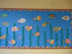 Under the sea:  The children created the fish for our under the sea bulletin board.