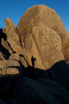 My Selfie   Artist  Steven Reed   Medium  Photograph - Photography #stevenreed #selfie