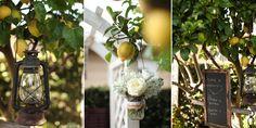 DIY backyard rustic wedding-beautiful!