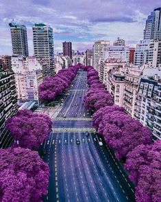 Buenos Aires♡