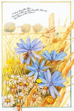 Marjolein Bastin, Bee Cards, Nature Artists, Book Sculpture, Dutch Artists, Nature Paintings, Vintage Flowers, Artist Art, Illustrations Posters