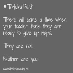 #ToddlerFact: Your toddler will feel they are ready to give up naps. They are not. Neither are you.
