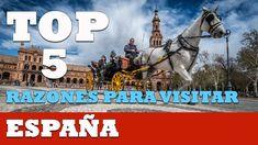 5 razones para visitar España - País más saludable del mundo Animals, Truths, World, Healthy, Countries, Animales, Animaux, Animal Memes, Animal