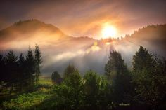 morning fog by hotonpictures on deviantART