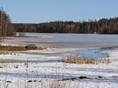 Spring is coming soon.  Finnish nature through my eyes - Sari Lapikisto