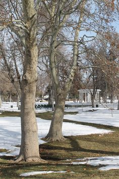 Changes considered for Memorial Park:    http://paysonchronicle.blogspot.com/2013/02/payson-city-contemplates-memorial-park.html