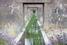 gilles clement gardens