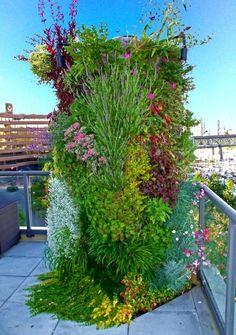 Jairo: #Architecture : Vertical Gardens
